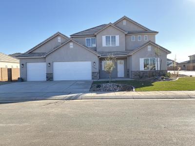 St George Single Family Home For Sale: 2248 E Tawny Ridge Cir