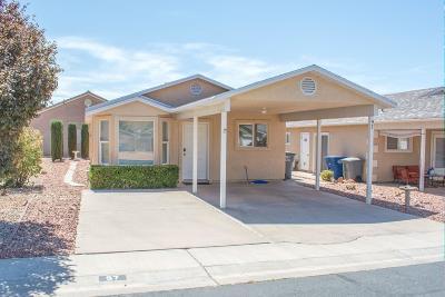 Hurricane Single Family Home For Sale: 97 Partidge Dr