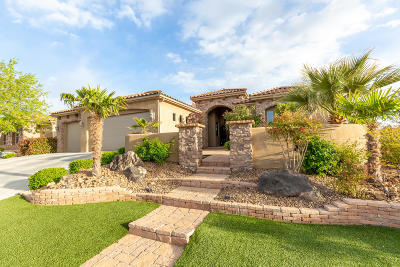 St George Single Family Home For Sale: 2490 2860 S Cir