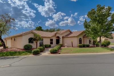 Washington Single Family Home For Sale: 659 N Monte Verde Cir