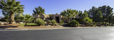 St George Single Family Home For Sale: 1663 Stone Cliff Dr