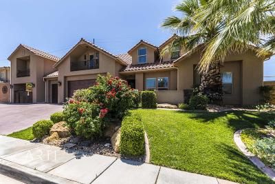 Washington  Single Family Home For Sale: 918 E Desert Shrub Dr