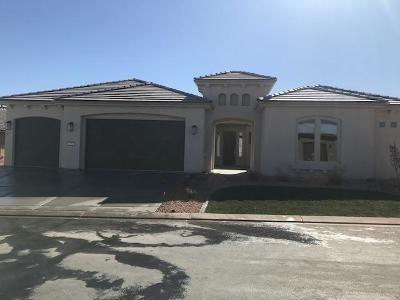 St George Single Family Home For Sale: 1651 W Grapevine Dr