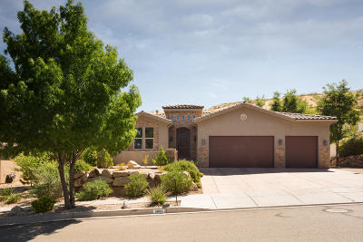 St George Single Family Home For Sale: 3687 S White Ridge Dr