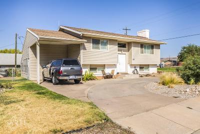 Washington Single Family Home For Sale: 287 N 200 E