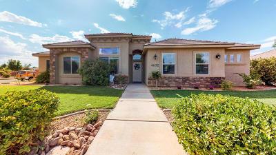 Washington Single Family Home For Sale: 4032 S 20 E