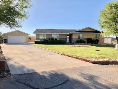 St George Single Family Home For Sale: 2890 S Palm Cir