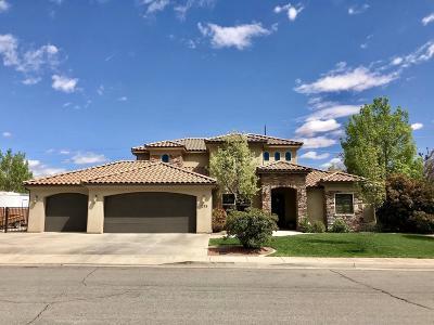 Washington Single Family Home For Sale: 1799 S 30 W