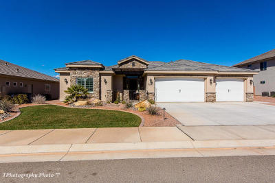 St George Single Family Home For Sale: 3287 E 3230 S