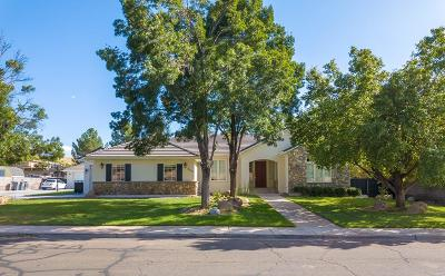 St George Single Family Home For Sale: 453 Belmont Dr