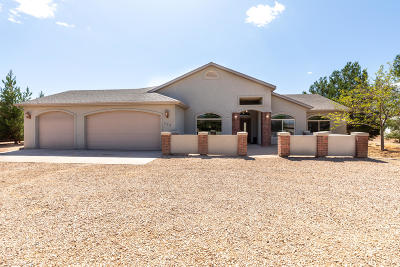 Dammeron Valley Single Family Home For Sale: 339 W Canyon Trails
