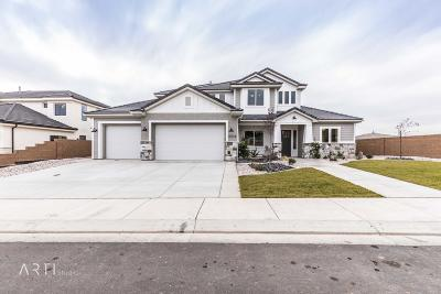 St George Single Family Home For Sale: 2518 S Monterosa Lane