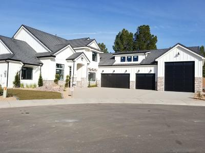St George Single Family Home For Sale: 1907 E Brisa Court