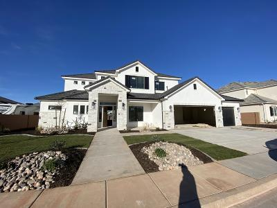 Washington Single Family Home For Sale: 995 E 4335 S