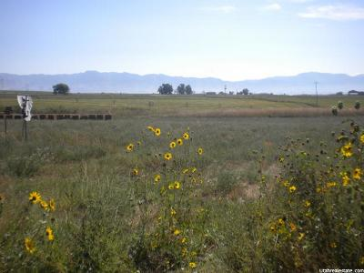 Newton Residential Lots & Land For Sale: 6310 N Hwy 23 Lot 5 W