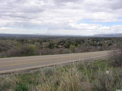 Cottonwood Heights Residential Lots & Land For Sale: 9121 S Little Cottonwood Rd E