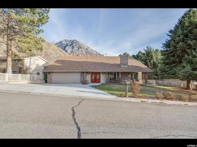Provo Single Family Home Under Contract: 2982 N Indian Hills Dr E