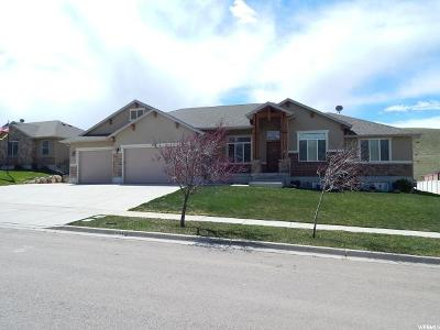 Single Family Home Sold: 934 S Valley View Dr