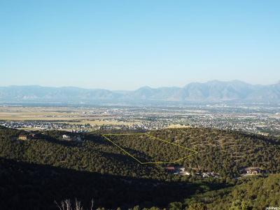 Herriman Residential Lots & Land For Sale: 7973 W Country View Ln S