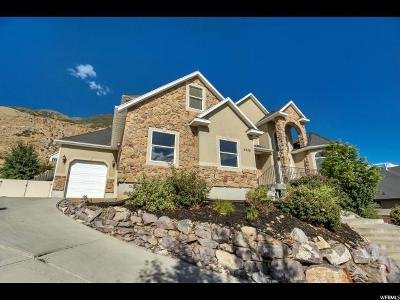Cedar Hills Single Family Home For Sale: 9398 N Canyon Heights Dr