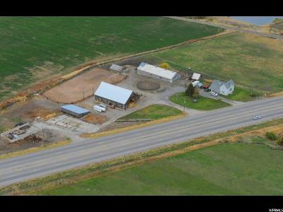 Cache County Single Family Home Under Contract: 8479 N Us Highway 91 E