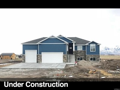 Tremonton Single Family Home For Sale: 11100 N 8400 W