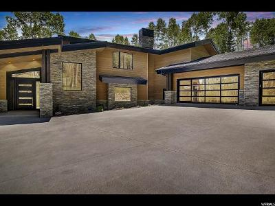 Park City Single Family Home For Sale: 197 White Pine Canyon Rd #197