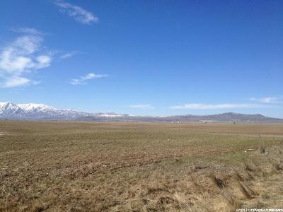 Cache County Farm For Sale: 7000 N 4800 W