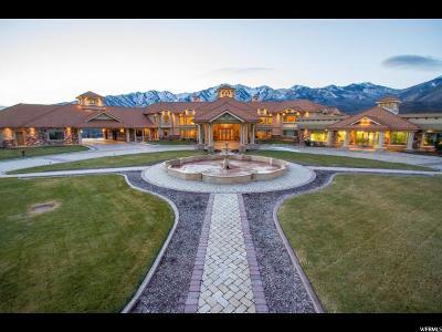 Springville Single Family Home For Sale: 8272 E Left Hand Fork Hobble Creek N