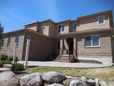 Draper Single Family Home For Sale: 1833 E Seven Oaks Ln S