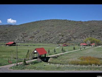 Spanish Fork Single Family Home For Sale: 20412 S Hwy 89 E