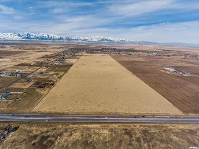 Tooele County Residential Lots & Land For Sale: 3700 N Highway 36