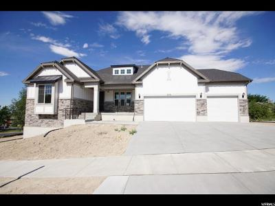 Orem Single Family Home For Sale: 570 S 980 W
