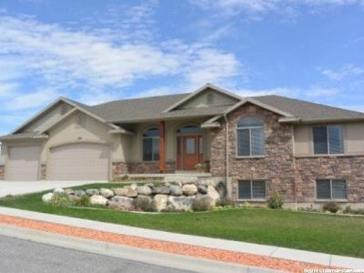 Tremonton Single Family Home For Sale: 1180 N 3130 W