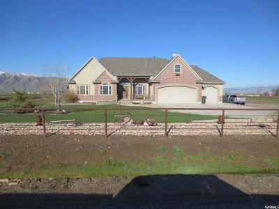 Spanish Fork Single Family Home For Sale: 5684 S 4000 W