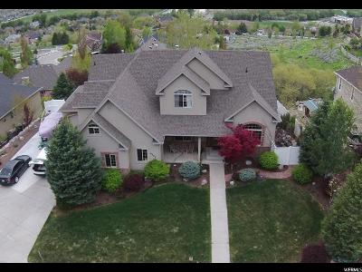 Cedar Hills Single Family Home For Sale: 9283 N Canyon Heights Dr E