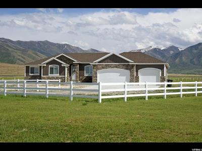 Erda Single Family Home For Sale: 1644 E Arrowhead Ln #103