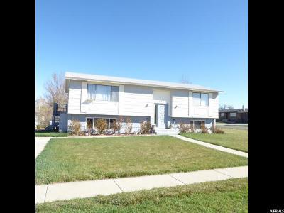 Orangeville Single Family Home For Sale: 205 E Cherry View Dr