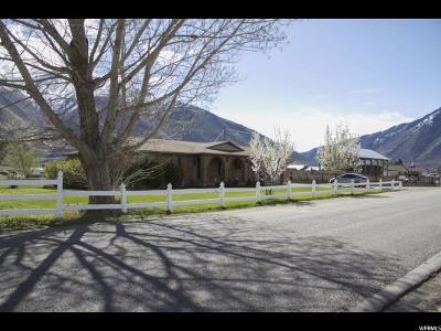 Spanish Fork Single Family Home For Sale: 7239 S 2400 E