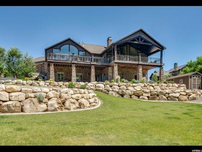 Springville Single Family Home For Sale: 7452 E Meadow Dr
