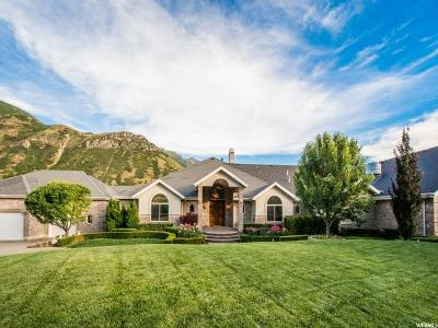 Springville Single Family Home For Sale: 3189 E Canyon Rd S