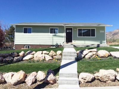 Brigham City Single Family Home For Sale: 789 E 675 S