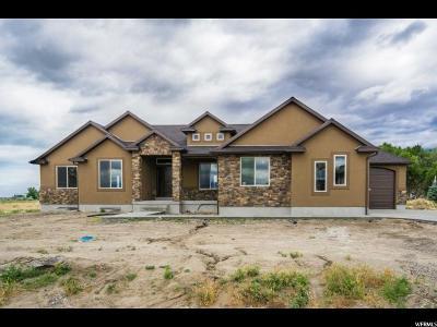 Erda Single Family Home For Sale: 4768 N Cochrane Ln #103
