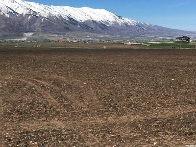 Hyrum Residential Lots & Land For Sale: 6251 S 1800 W
