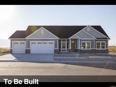 Springville Single Family Home For Sale: 579 S 1950 E #48