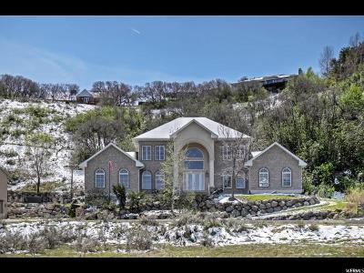 Sandy Single Family Home For Sale: 2672 E Dimple Dell Rd