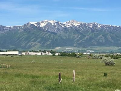 Hyrum Residential Lots & Land For Sale: 595 N 600 E