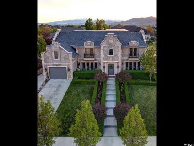 Alpine Single Family Home For Sale: 891 S Healey Homestead Cir E