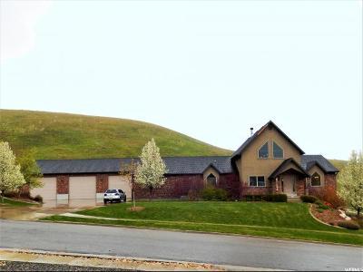 Wellsville Single Family Home For Sale: 331 Pinecrest Cir