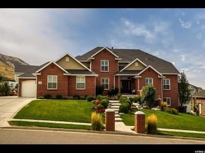 Perry Single Family Home For Sale: 50 E 1550 S
